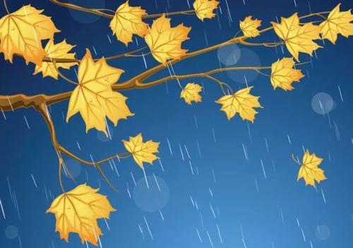 又是秋雨感同身受