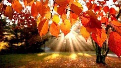 秋,带心一起去远行!
