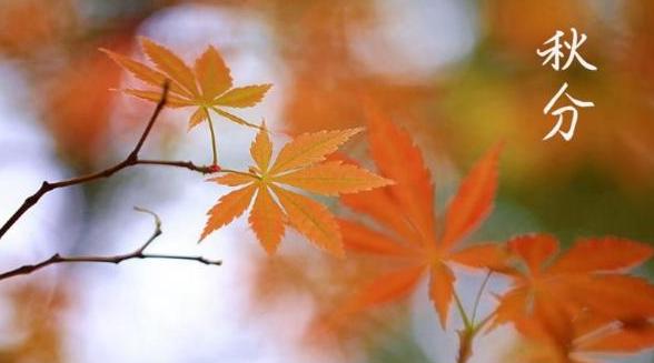 秋分时节最美诗词