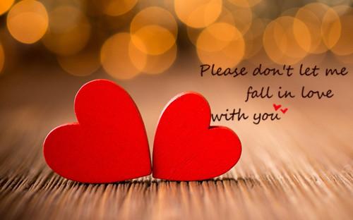 对你的爱_情感散文